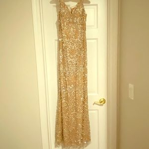 Terani size 2 evening gown.